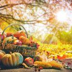Spezialitäten im Herbst: So lecker schmeckt die dritte Jahreszeit!
