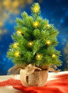 kleiner LED-Christbaum von Jungborn