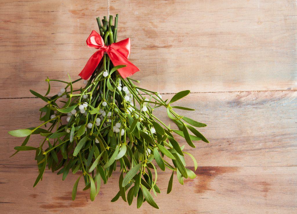 Mit Mistelzweigen dekorieren für Weihnachten