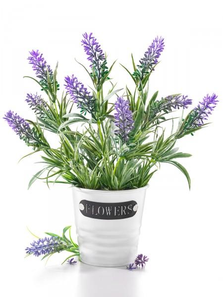 "Lavendeltopf ""Provence"""