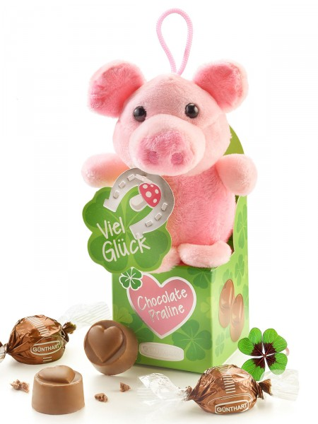 Süße Glücksschweinbox