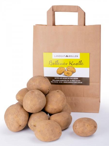 Landkartoffel-Belana, festkochend