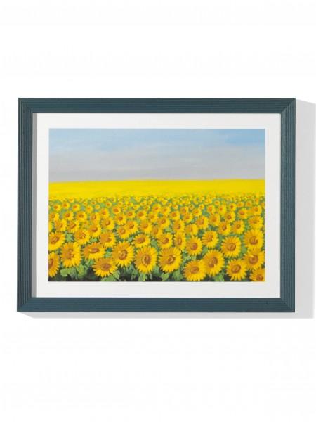 Sonnenblumen-Bild