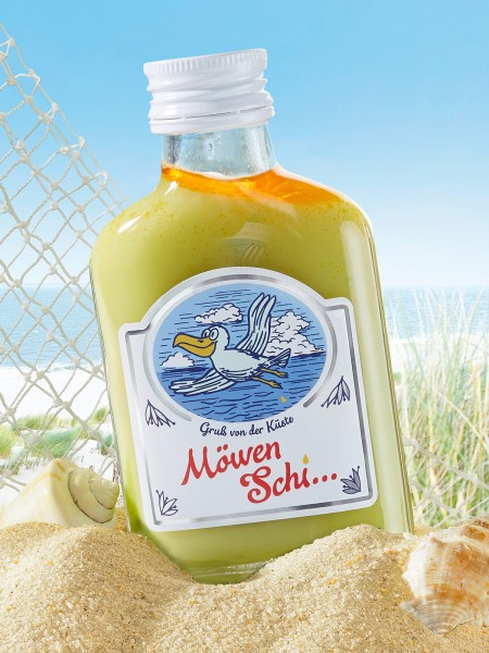 Möwen Schi ...