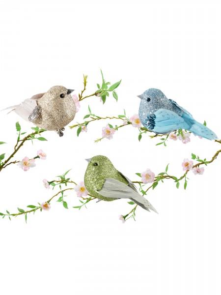 Clip-Vögel, Trio