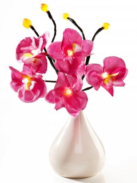 """Leuchtzweig """"Orchidee"""""""