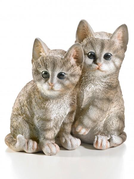 "Katzenkinder ""Mia & Fee"""